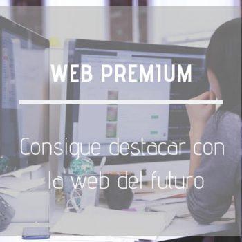 Hacer Pagina Web Premium